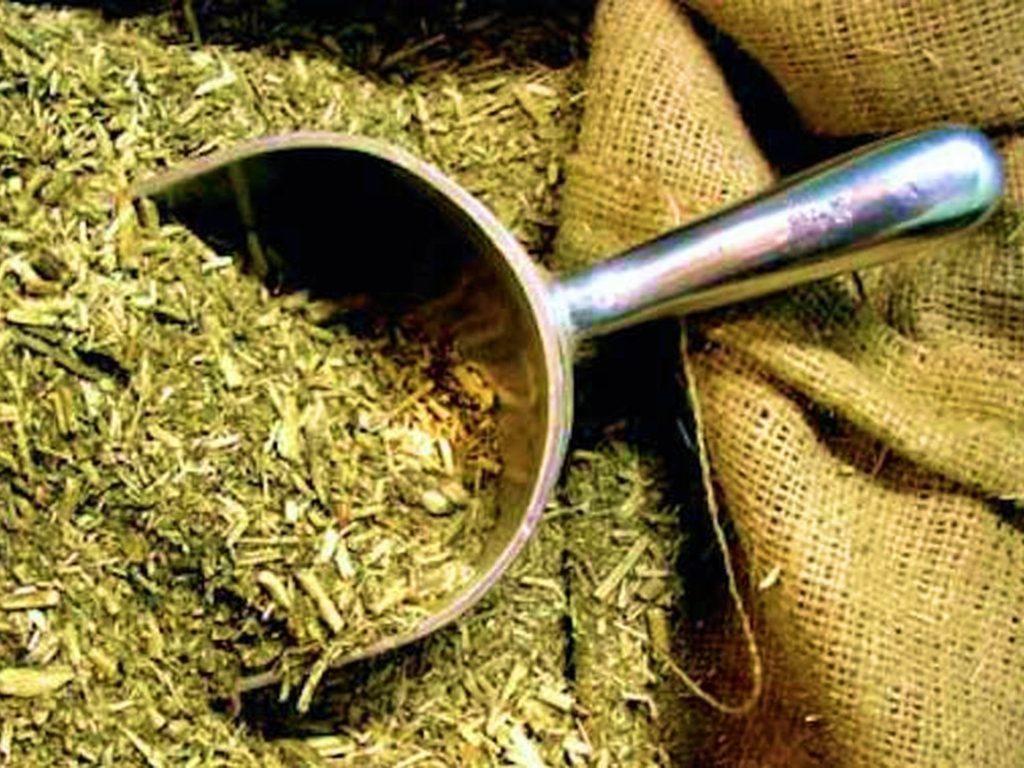 Circuito Yerba Mate : Bungalows yerba mate alojamiento dentro del complejo termas