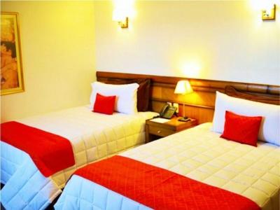 De la Trinidad Hotel Encarnanación