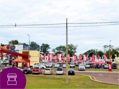 Exposiciones, Ferias